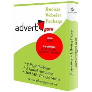 Bronze Website Designing and hosting package in Harare Zimbabwe