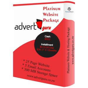 Platinum Website Designing and hosting package in Harare Zimbabwe